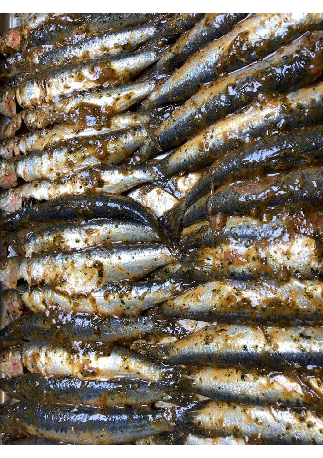 Sardines gemarineerd